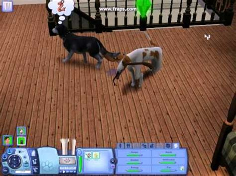 The sims 3 pets dog glitch - YouTube