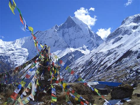 Climbers Die in Tragic Accident on Annapurna - Gripped